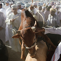 Nizwa, Sultanate of Oman, 28 November 2008<br />