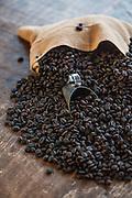 Belo Horizonte_MG, Brasil.<br /> <br /> Detalhe de graos de cafe.<br /> <br /> Detail of coffee beans.<br /> <br /> Foto: JOAO MARCOS ROSA / NITRO