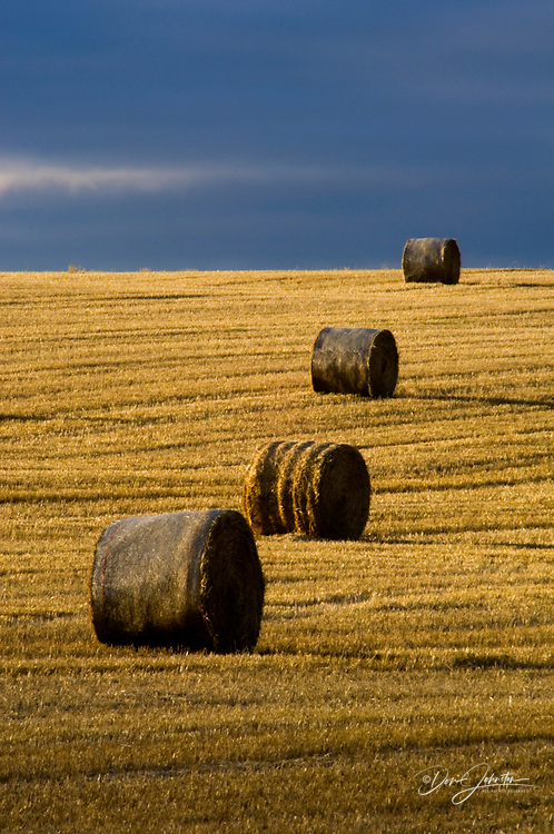 Hay rolls and prairie field with receding storm clouds, Entice, Alberta, Canada