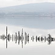 Timber Ponds V, Kelburn, Inverclyde, Scotland.