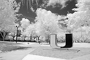 University of Miami Campus in Infrared
