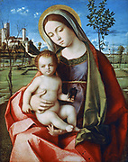 Virgin and Child', c1430. Giovanni Bellini (1426-1516) Italian Renaissance painter. Virgin, sdeated in a landscape, naked Jesus holding a swallow, the bird of consolation.