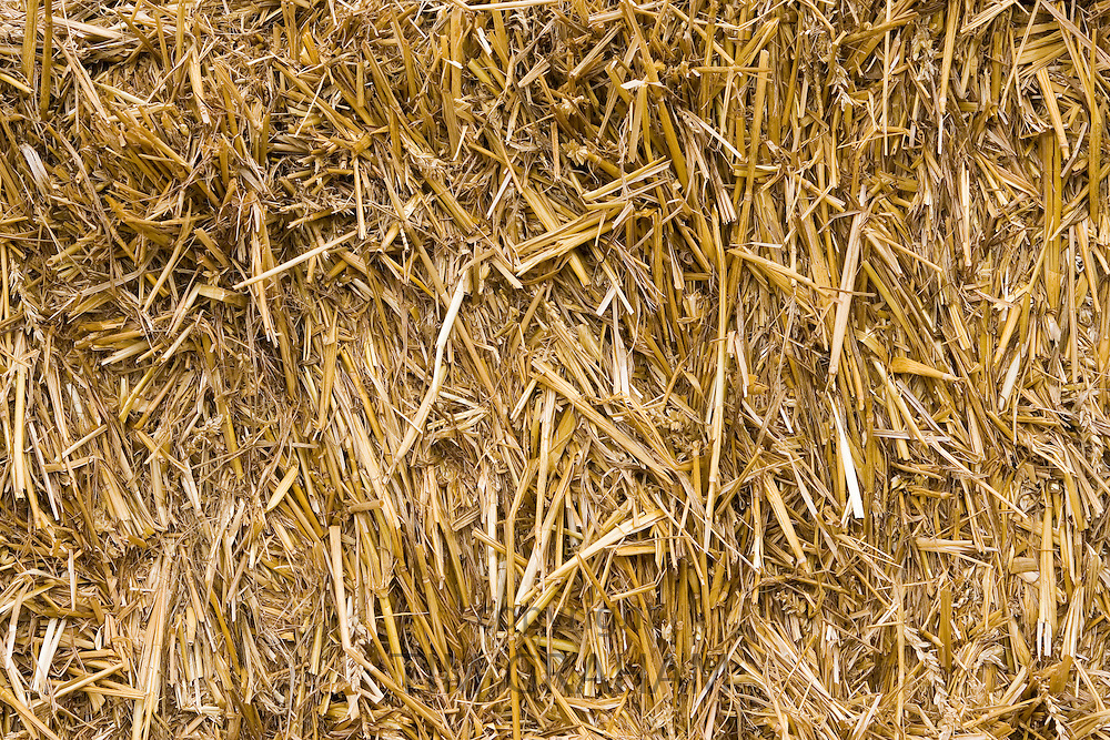 Straw in a bale, Cotswolds, United Kingdom