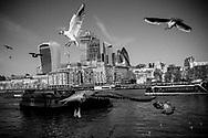 Janvier 2019. Londres. Royaume-Uni. Quartier financier de la City à l'heure du Brexit.
