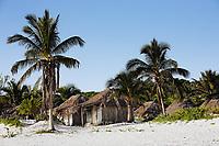 cabana on the beach  of tulum in yucatan