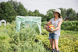 Happy mid adult woman with vegetable basket in community garden, Bavaria, Germany