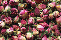 Roses sechees. // Drying roses.