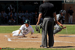 17 April 2016:  With the throw to the catcher late and up the line towards 3rd base, John Bosco slides easily into home plate to score a run during an NCAA division 3 College Conference of Illinois and Wisconsin (CCIW) Pay in Baseball game during the Conference Championship series between the North Central Cardinals and the Illinois Wesleyan Titans at Jack Horenberger Stadium, Bloomington IL
