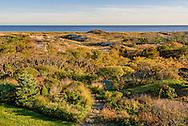 Path to Beach and Dunes, East Hampton, NY