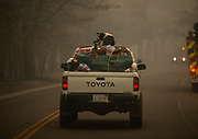 A dog sits in the trunk of a truck in the Camp Fire in Paradise, Saturday, November 10, 2018.
