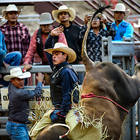 Ty Toadlena holds on as his bull kicks from the chute during the Gallup Intertribal Indian Ceremonial Rodeo Chute Out Thursday at Red Rock Park in Gallup.