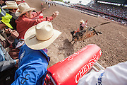 Bull Riding from behind the chutes at Cheyenne Frontier Days in Cheyenne, Wyoming.
