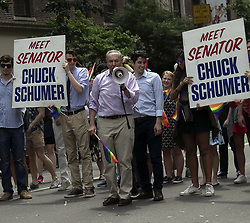 June 24, 2018 - New York, New York, United States - New York Senator Chuck Schumer takes part in the Gay Pride Parade on June 24 2018 in New York City  (Credit Image: © John Sheene/Ace Pictures via ZUMA Press)