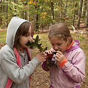 Young girls sniff fallen oak leaves on an autumn afternoon