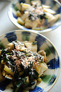 Cooked bamboo shoot with vegetables, Mr and Mrs H's house, Chiba prefecture, Japan, April 29, 2011.