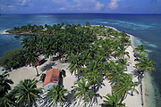beach, coconut palm trees, and lighthouse keeper's compound, Northern Two Cayes, Lighthouse Reef Atoll, Belize, Central America ( Caribbean Sea )