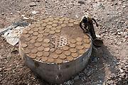 India, Maharashtra, Nashik Drying cow dung for fuel