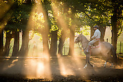 Gaucho in dappled sunlight, Estancia Huechahue, Patagonia, Argentina, South America