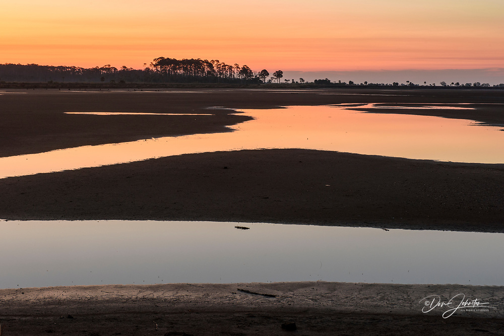 Wetlands at dawn, St. Marks NWR, Florida, USA