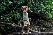 Ecuador, May 10 2010: Jorge balances on a log with a chain saw. Copyright 2010 Peter Horrell