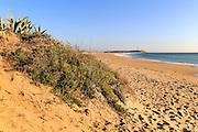 Sandy beach at Cabo de Trafalgar, Cadiz Province, Spain