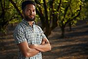 Bryan Harper, Oregon hazelnut farmer in one of his groves.
