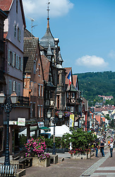 General view of the town of Saverne, Alsace, France<br /> <br /> (c) Andrew Wilson | Edinburgh Elite media