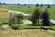 Nederland, Kinderdijk, 30-5-2018 Typisch nederlands, hollands, landschap met groene weilanden in polders, water in sloten en koeien in laagland . Foto: Flip Franssen