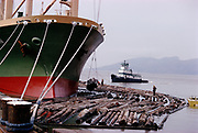 CS01612-07. Sea Fan, from Singapore, is loading logs from a log boom brought by tug boat Myrtle in Astoria, April 1974