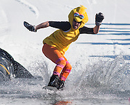 A snowboarder wearing a Big Bird costume crosses the water during the Wacky Water Event at the Spring  Rally at Mount Peter Ski and Ride in Warwick, New York. The Spring Rally traditionally closes the season at the ski area.