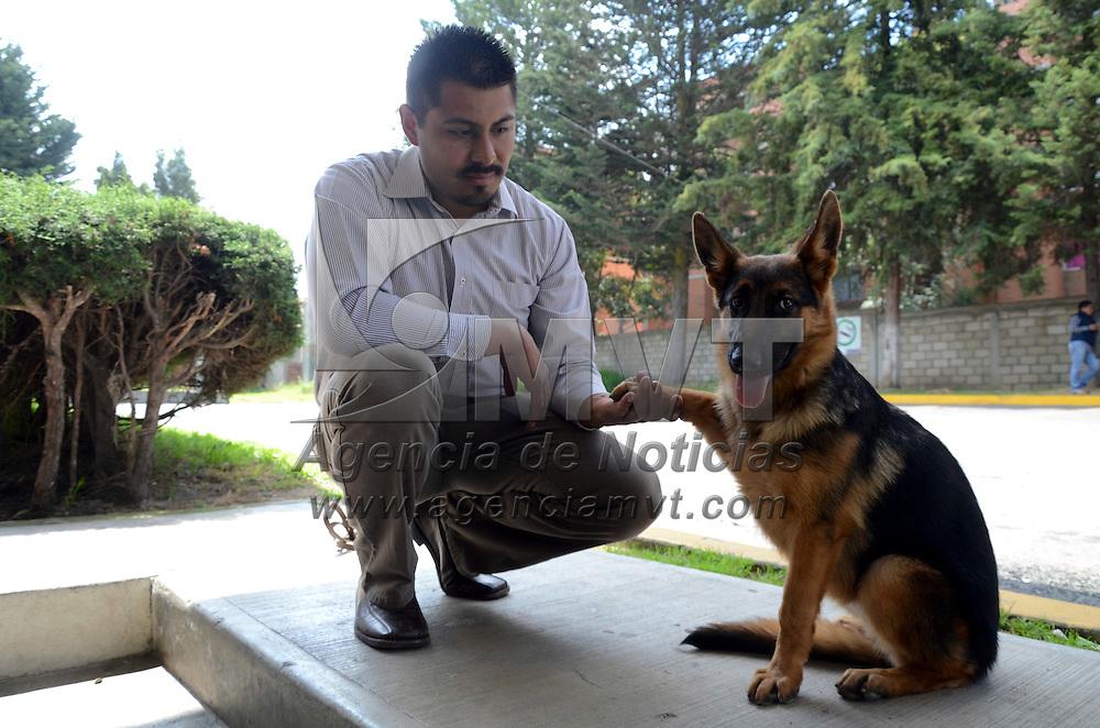 Metepec, México.- Aspectos de algunos caninos que participaran en la Décima Exposición de Belleza Canina 2015 el 7 y  8 de noviembre en el recinto ferial de Metepec. Agencia MVT / Arturo Hernández.