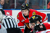 KELOWNA, BC - FEBRUARY 8: James Stefan #13 of the Portland Winterhawks lines up for the face off against the Kelowna Rockets at Prospera Place on February 8, 2020 in Kelowna, Canada. (Photo by Marissa Baecker/Shoot the Breeze)