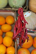 Dried red hot chillies