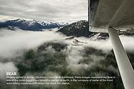 Khutzeymateen Inlet, Northern British Columbia, Canada