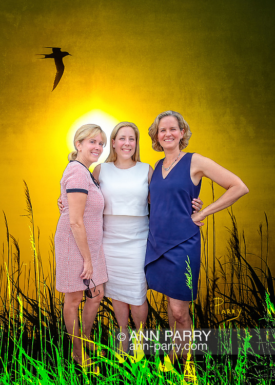 [Photo Composite Illustration] Massapequa, NY, USA. Aug. 5, 2017. L-R, LAURA GILLEN, Hempstead Town Supervisor; LIUBA GRECHEN SHIRLEY, Congressional candidate for NY 2nd District; and LAURA CURRAN, Nassau County Executive, all Democrats, pose during official opening of Shirley's campaign office. (Setting: Merrick, NY, USA. June 20, 2013. Tern flies over marsh reeds at Levy Park & Preserve.)