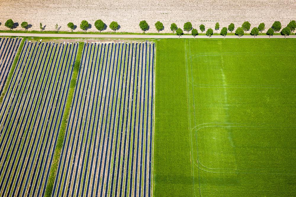 Nederland, Limburg, Gemeente Roerdalen, 27-05-2013; ten noordwesten van Montfoort en Aan den Berg, akkers met asperges.<br /> <br /> QQQ<br /> luchtfoto (toeslag op standaardtarieven);<br /> aerial photo (additional fee required);<br /> copyright foto/photo Siebe Swart.