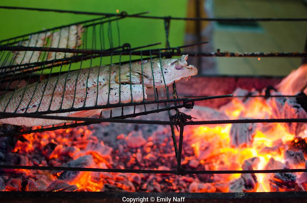 Streetside grill in Jericoacara, Brazil