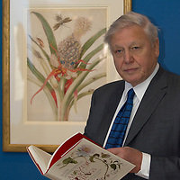 Broadcaster Sir David Attenborough looks around the Queen's Gallery at the Palace of Holyroodhouse, Edinburgh prior to the opening of the Amazing Rare Things exhibition on March 2, 2007. The Ecxhibition will be in London later on this year