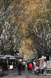 August 18, 2017 - Barcelona, Spain - La Rambla, tree-lined pedestrian mall between the Barrio Gotico and the Raval and connecting Plaza Cataluña with Christopher Columbus Monument, Barcelona, Spain. Picture by Manuel Cohen (Credit Image: © Manuel Cohen/Aurimages via ZUMA Press)