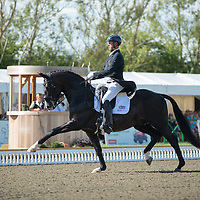 FEI Nations Cup Dressage - Hickstead 2013