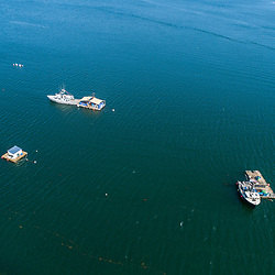 Lobster boats anchored off of Little Chebeague Island in Casco Bay, Portland, Maine.