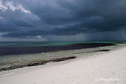 summer rain squall approaches beach, Sandy Point, Great Abaco, Abaco Islands, Bahamas ( Western Atlantic Ocean )
