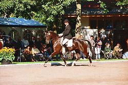 , Warendorf - Bundeschampionate 03. - 08.09.1996, Roger Rabbit 20 - Burfeind, Hartwig