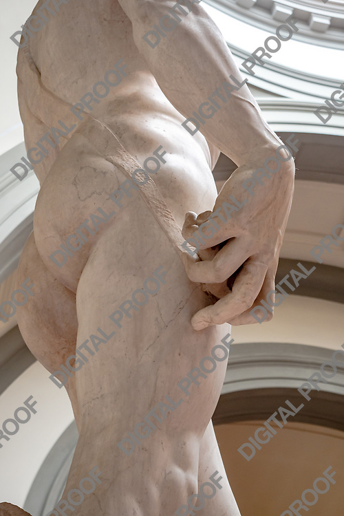Hand details from the Statue of David (David by Michelangelo) in the Galleria della accademia. Vertical crop. Florence, Italy May 12, 2019.