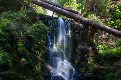 Berry Creek Falls, Big Basin Redwoods State Park, California