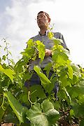 Pierre Larmandier, owner and winemaker, in the vineyard, Champagne Larmandier-Bernier, Vertus, Cote des Blancs, Champagne, Marne, Ardennes, France