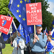 Anti-Brexit march from Parliament yard to meet Guy Verhofstadt is a Chief Brexit Co-ordinator in the European Parliament on 10 May 2019, Westminster, London, UK.