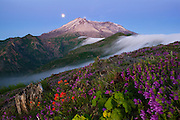 The full moon sets behind Mount St. Helens, which is framed by a dramatic fog falls and blooming summer wildflowers, including foxglove and Indian paintbrush.
