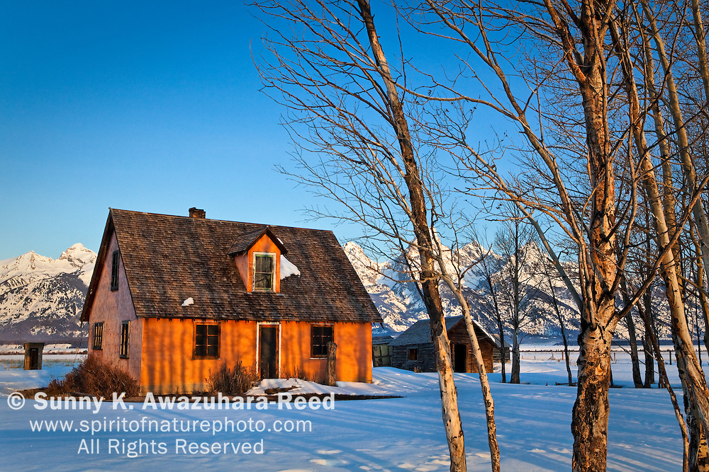 A historic house, John & Bartha Moulton Residence, at Mormon Row, Antelope Flat in Grand Teton National Park, WY on a sunny morning.  Winter scene.