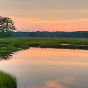The Great Marsh, Rowley, Massachusetts, is 20,000 acres of salt marsh extending from Cape Ann to the mouth of the Merrimack River.